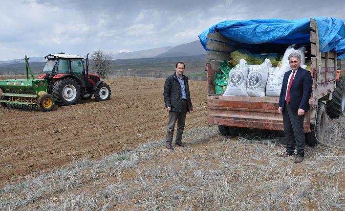 üreticilere 160 ton yem bitkisi tohumu dağıtıldı